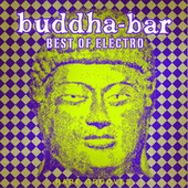 Buddha Bar Best of Electro : Rare Grooves von Various Artists