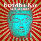 Buddha Bar Best of Lounge : Rare Grooves von Various Artists