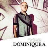 Rendez-nous la lumière - Single by Dominique A