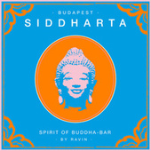 Siddharta, Spirit of Buddha Bar vol.5 : Budapest von Various Artists