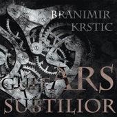 Guitars Subtilior by Branimir Krstic