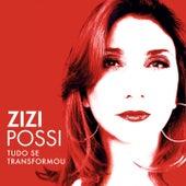 Play & Download Tudo Se Transformou by Zizi Possi | Napster
