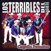 Play & Download Orgullo Potosino by Los Terribles Del Norte | Napster