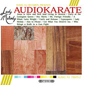 Play & Download Lady Melody by Audio Karate | Napster