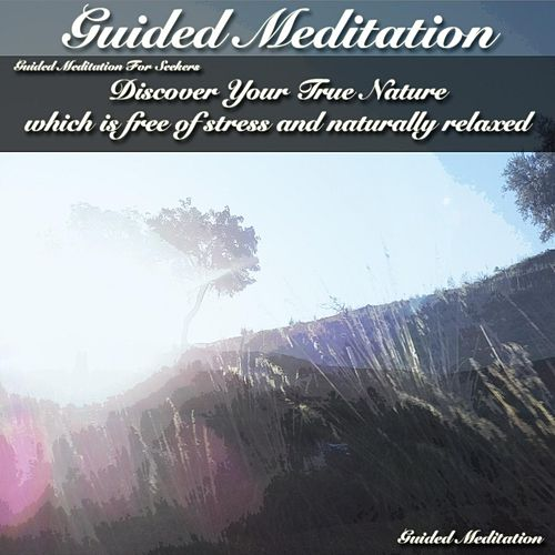 Play & Download Guided Meditation for Seekers: Discover Your True Nature Which Is Free of Stress and Naturally Relaxed by Guided Meditation | Napster