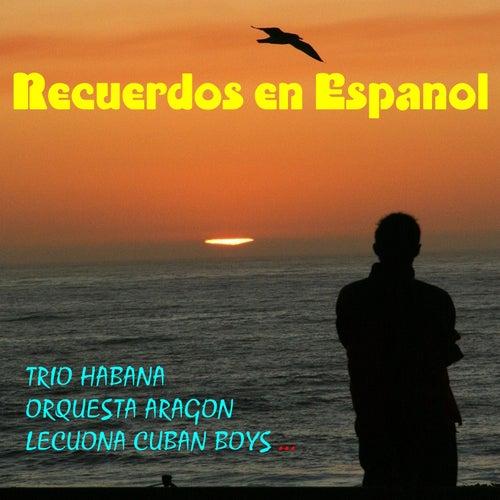 Recuerdos en Espanol by Various Artists