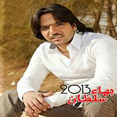 Play & Download Bahaa Sultan 2013 by Bahaa Sultan | Napster