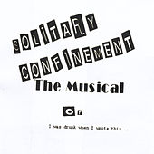 Play & Download Solitary Confinement the Musical: Or I Was Drunk When I Wrote This... by Todd | Napster