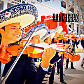 Play & Download Rancheras by Various Artists | Napster