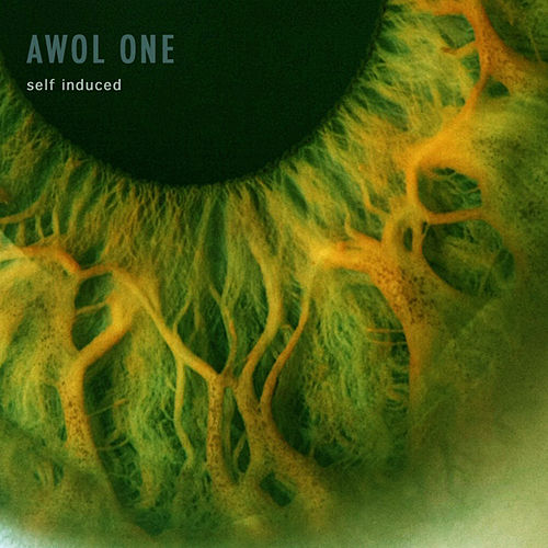 Self Induced by AWOL One