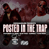 Play & Download Swishhouse Presents Posted in the Trap by Swisha House | Napster
