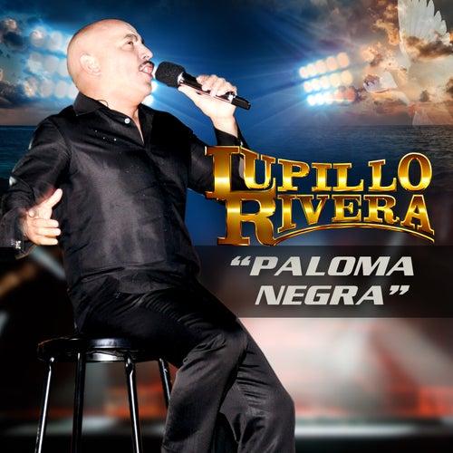 Play & Download Paloma Negra by Lupillo Rivera | Napster