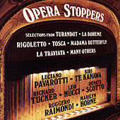 Play & Download Opera Stoppers by Various Artists | Napster