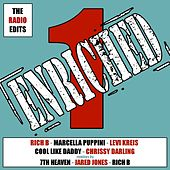 Enriched ONE - The Radio Edits Album - EP by Various Artists