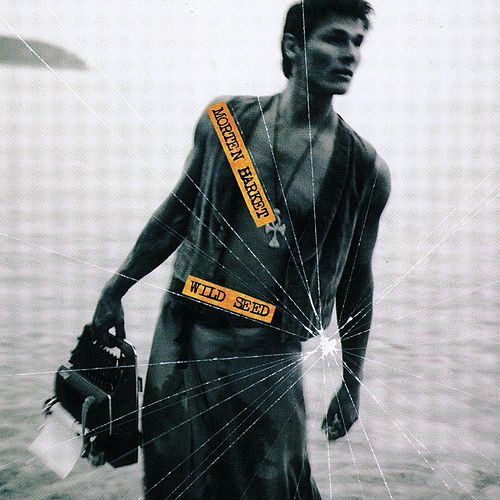 Wild Seed by Morten Harket