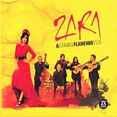 Play & Download Zara & İstanbul Flamenko 5'lisi by Zara | Napster