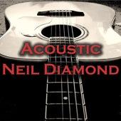 Acoustic Neil Diamond by Wildlife