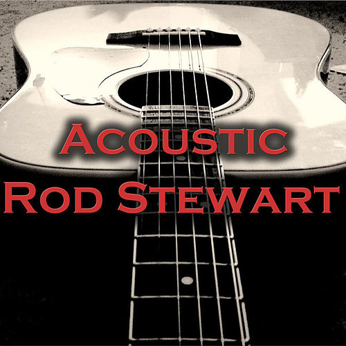 Acoustic Rod Stewart by Wildlife