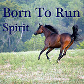 Play & Download Born To Run by Spirit | Napster