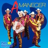 Ya Me Voy by Conjunto Amanecer