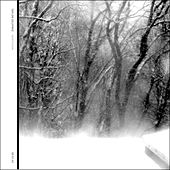 Play & Download Northern by Taylor Deupree | Napster