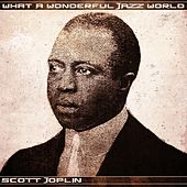 What a Wonderful Jazz World von Scott Joplin