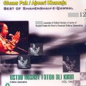 Play & Download Best of Shahenshah-E-Qawwal,12 by Nusrat Fateh Ali Khan | Napster