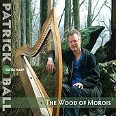 The Wood of Morois by Patrick Ball