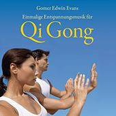 Play & Download Qi Gong - Einmalige Entspannungsmusik by Gomer Edwin Evans | Napster