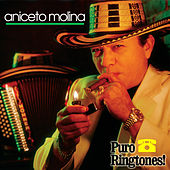 Play & Download La Cumbia Campanera by Aniceto Molina | Napster