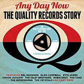 Any Day Now: The Quality Records Story 1960-1962 von Various Artists