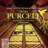 Purcell: Serenading Songs & Grounds von Various Artists