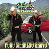 Puro Sierreño Bravo by Los Cuates De Sinaloa
