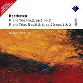 Play & Download Beethoven : Piano Trios Nos 2, 5 & 6 by Haydn Trio Wien | Napster