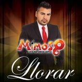 Llorar by El Mimoso Luis Antonio López