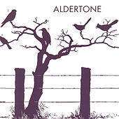 Aldertone by Aldertone