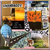 Just Like The Fambly Cat by Grandaddy
