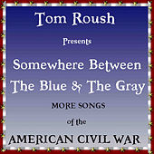 Somewhere Between the Blue & the Gray by Tom Roush