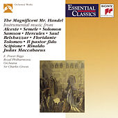 Play & Download The Magnificent Mr. Handel by Various Artists | Napster