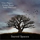 Play & Download Sacred Spaces by Peter Phippen | Napster