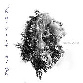 Play & Download Harvest Nigh - EP by Tideland | Napster