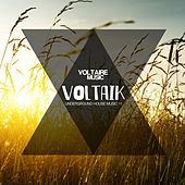 Voltaik, Vol. 11 by Various Artists