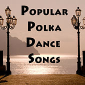 Popular Polka Dance Songs by The O'Neill Brothers Group