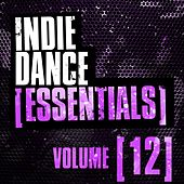 Play & Download Indie Dance Essentials Vol. 12 - EP by Various Artists | Napster