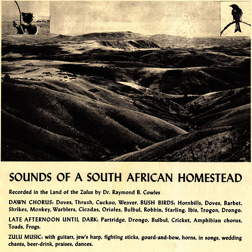 Play & Download Sounds of a South African Homestead by Unspecified | Napster
