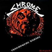 Chromosome Damage by Chrome
