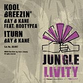Play & Download Kool Breezin' (feat. Rootypea) - Single by Bay B Kane | Napster