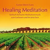 Play & Download Healing Meditation: Seelisch heilsame Meditationsmusik by Gomer Edwin Evans | Napster