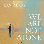 Play & Download We Are Not Alone by David Haas | Napster