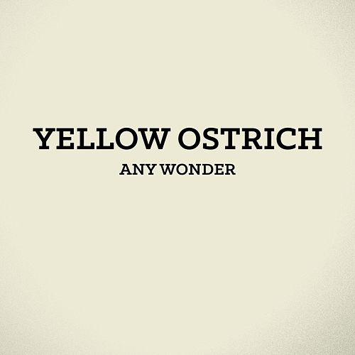 Any Wonder - Single by Yellow Ostrich